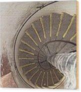 Helical Stairway Wood Print