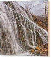 Hell Roaring Falls Wood Print