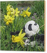 Hello Spring. Ginny From Travelling Pandas Series. Wood Print