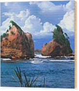 Hells Gate Rocks Near Calibishie Dominica Wood Print