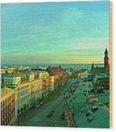 Helsingborg And Oresund Beyond Wood Print