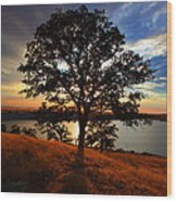 Hensley Tree Wood Print