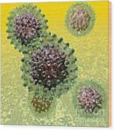 Hepatitis B Virus Particles Wood Print