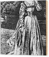 Herbert: Vanity Wood Print