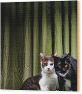 Here Kitty Kitty Wood Print