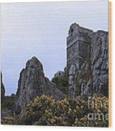 Hermit Rock Wood Print