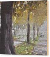 Herne Bay Park Fog 1 Wood Print