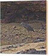 Heron  Wood Print