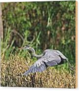 Heron Flying Along The River Bank Wood Print
