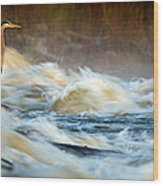 Heron In Centaur Shute Wood Print
