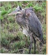 Heron In The Wind Wood Print