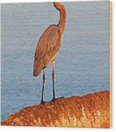 Heron On Palm Wood Print