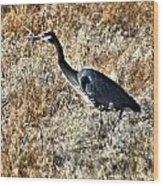 Heron On The Hunt Wood Print