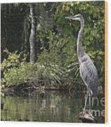 Heron Overlord Wood Print