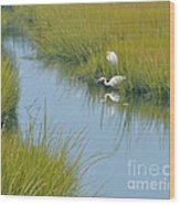Heron Reflections Wood Print