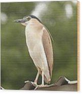 Heron The Great Wood Print