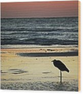 Heron Waiting For The Sunrise Wood Print