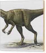 Herrerasaurus Ischigualastensis Wood Print