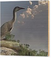 Hesperornis By The Sea Wood Print
