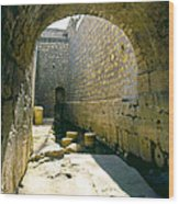 Hezikiahs Tunnel Pool Of Shiloah Wood Print