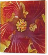 Hibiscus Center Wood Print