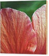 Hibiscus Fandango Wood Print