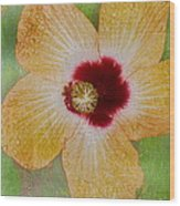 Hibiscus Gold And Red Wood Print