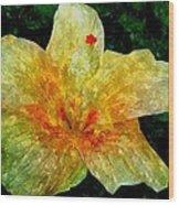 Hibiscus Hiwc Wood Print