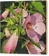 Hibiscus In Summer Wood Print