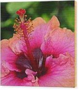 Hibiscus Love Wood Print