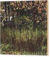 Hidden Away Wood Print