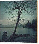 Hidden Bay Wood Print