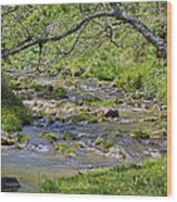 Hidden Creek Wood Print