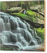 Hidden Elakala Falls Wood Print