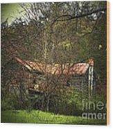 Hidden House In Spring Wood Print
