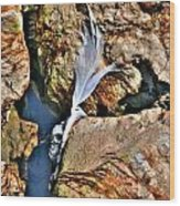 Hidden Images Vert Wood Print