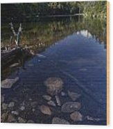 Hidden Pond Wood Print