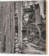 Hidden Treasures Sepia Wood Print by JC Findley