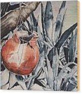 Hide And Seek Wood Print by Regina Ammerman