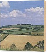 High Angle View Of Patchwork Fields Wood Print