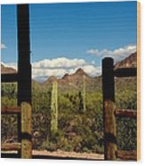 High Chaparral Old Tuscon Arizona  Wood Print