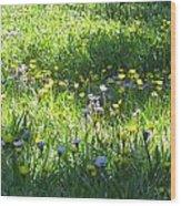 High Meadow Flowers Wood Print