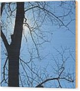 High Noon Sun Wood Print