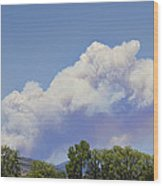 High Park Fire Larimer County Colorado  Wood Print by James BO  Insogna