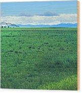 High Plains Spring Wood Print