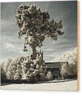 High Tree Wood Print