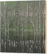 High Waters In A Forest Of Evergreens Wood Print