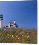 Highland Lighthouse Cape Cod Wood Print by Skip Willits