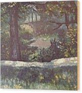 Highland Park 1 Wood Print