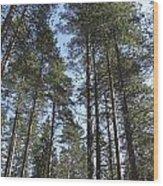 Hight Sky Wood Print